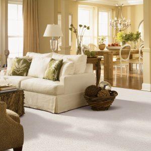 Living room carpet flooring   The Carpet Factory Super Store